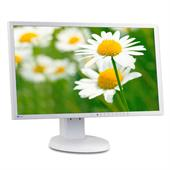 "EIZO FlexScan EV2316W 58,4cm (23"") TFT-Monitor (LED, FULL HD 1920x1080, Pivot, DP + DVI-D + USB) Gra"