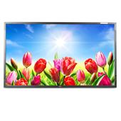 "NEC MultiSync V423 106cm (42"") Public Info-Display (1920x1080, LED, S-IPS, HDMI, BNC, Seriell) + FB"