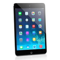 Apple iPad mini graphit / schwarz