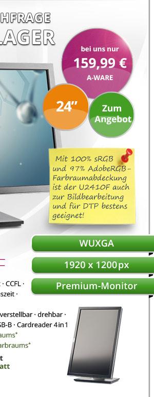 Dell UltraSharp U2410F Bild2