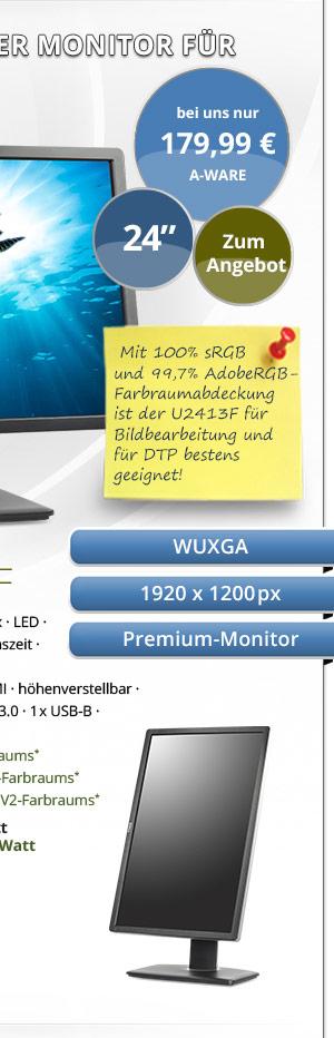 Dell UltraSharp U2413F Monitor gebraucht! Bild2